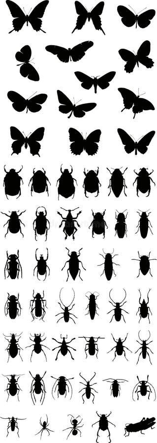 1 вектор силуэта насекомых иллюстрация штока