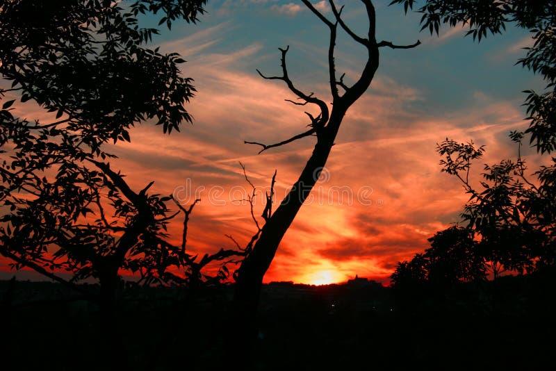 1 заход солнца Стоковые Изображения