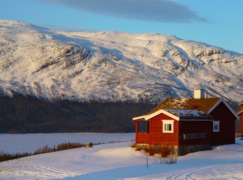 1 зима стоковая фотография rf
