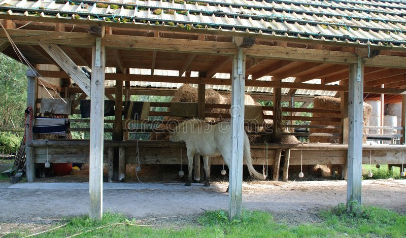1 конюшня лошади стоковые фото