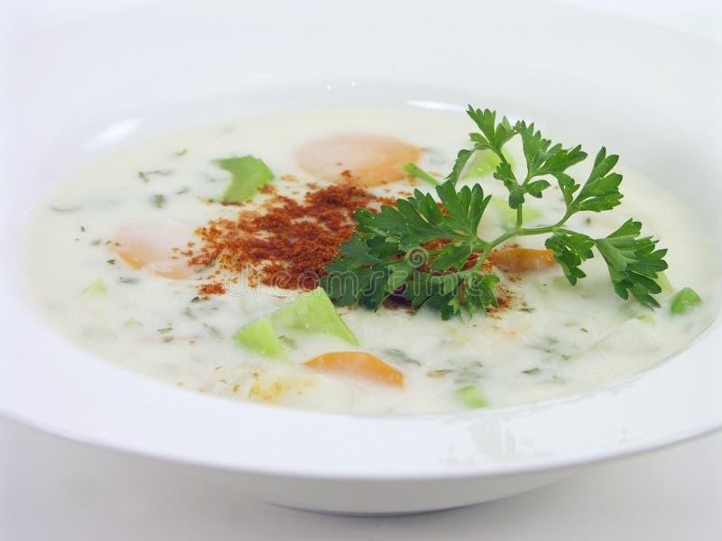 1 овощ 5 супов стоковое изображение