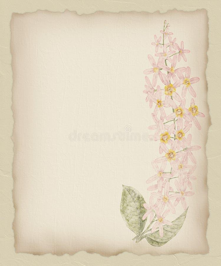 1 сорванная бумага цветка предпосылки бесплатная иллюстрация