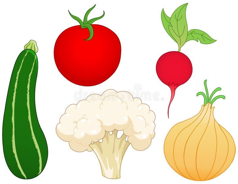 1 установленный овощ иллюстрация вектора