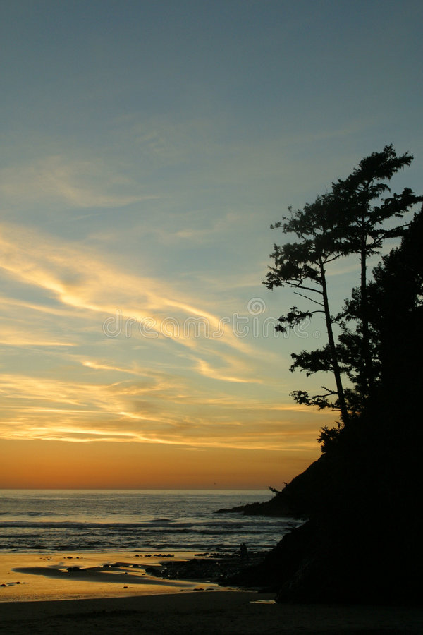 1 2 ακτή Όρεγκον στοκ φωτογραφία με δικαίωμα ελεύθερης χρήσης