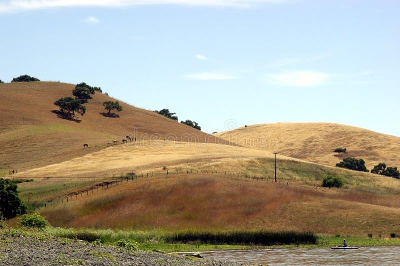 1加利福尼亚小山 免版税库存照片