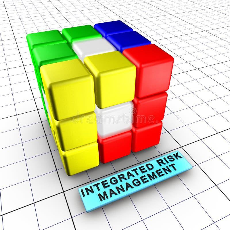 1 6充分的综合化管理风险 皇族释放例证