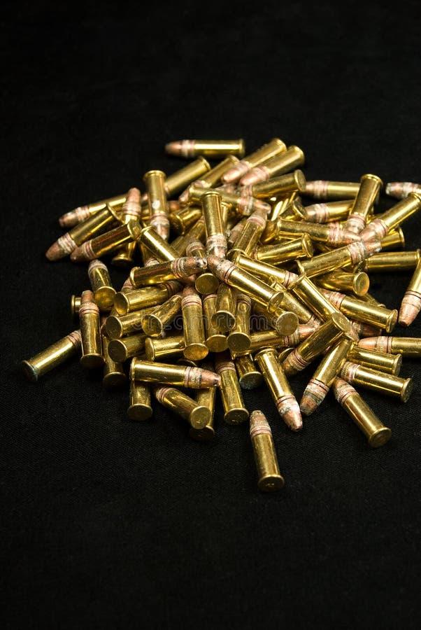 1 ammo royaltyfri foto