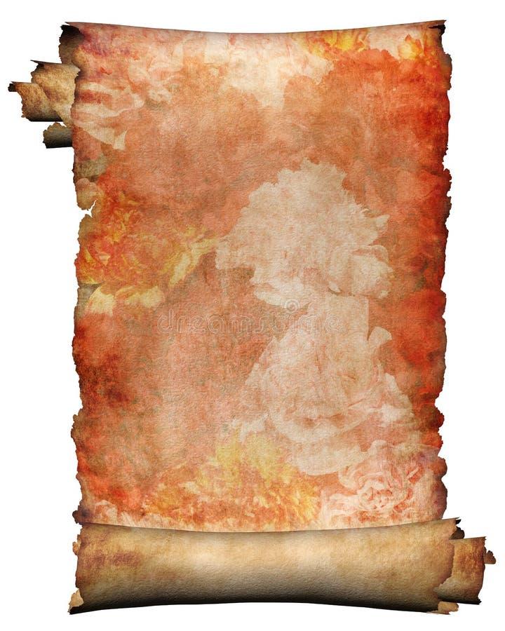 1 blommamanuskript royaltyfria foton