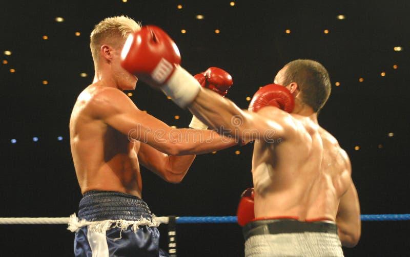 1 boxning arkivbilder