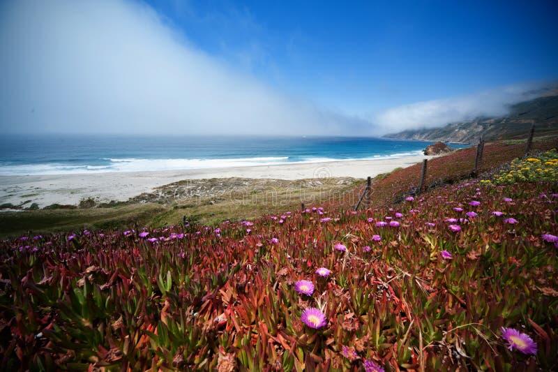 1 California imagenes de archivo