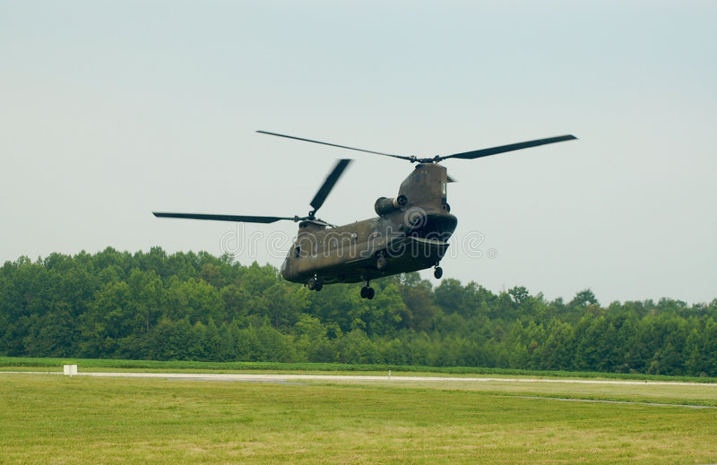 1 chinook fotografia royalty free