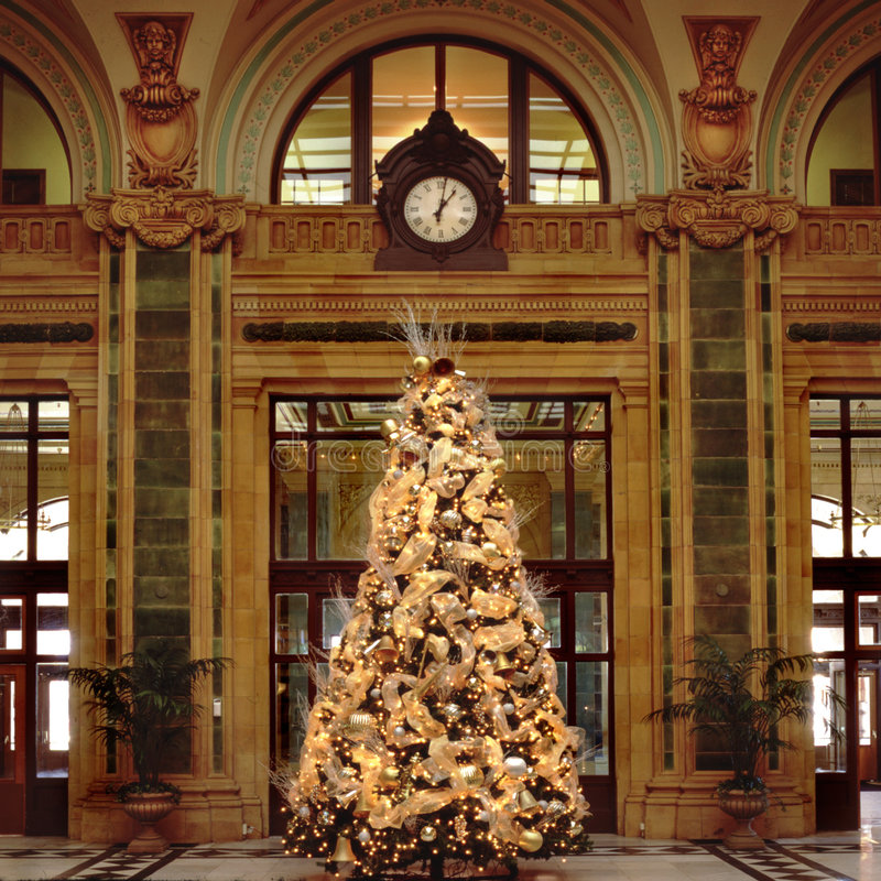 1 christmas tree στοκ εικόνες