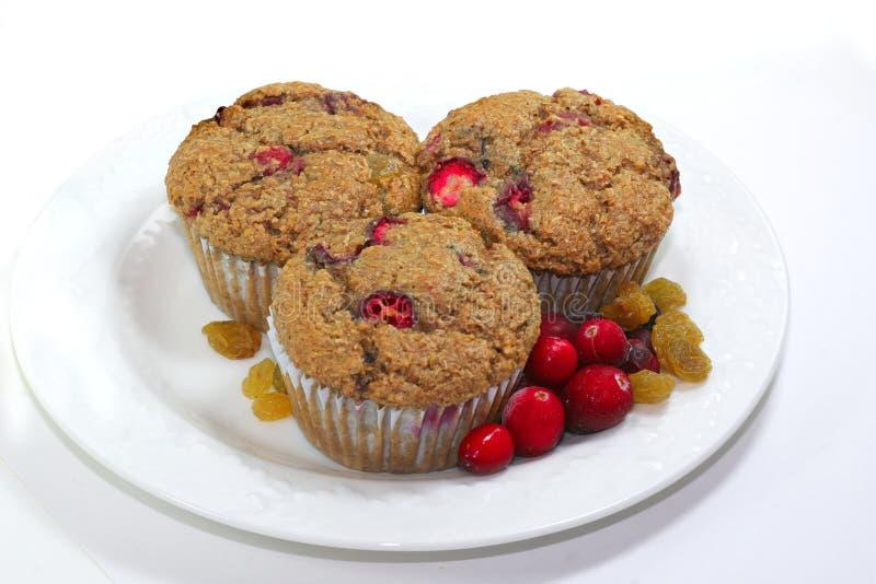 1 cranberrymuffin raisen arkivbilder