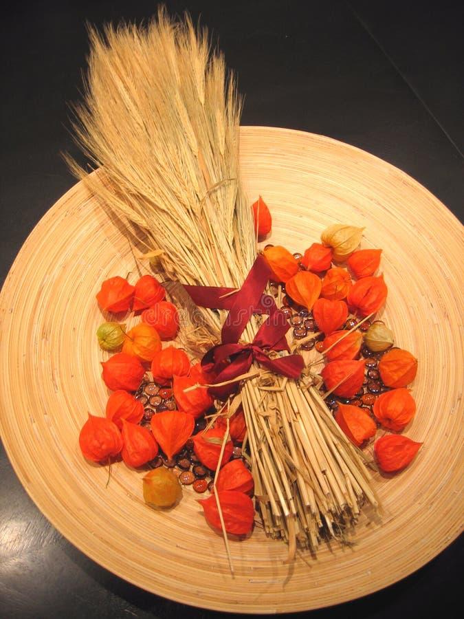 Download 1 dekoracja jesienią zdjęcie stock. Obraz złożonej z uprawa - 28688