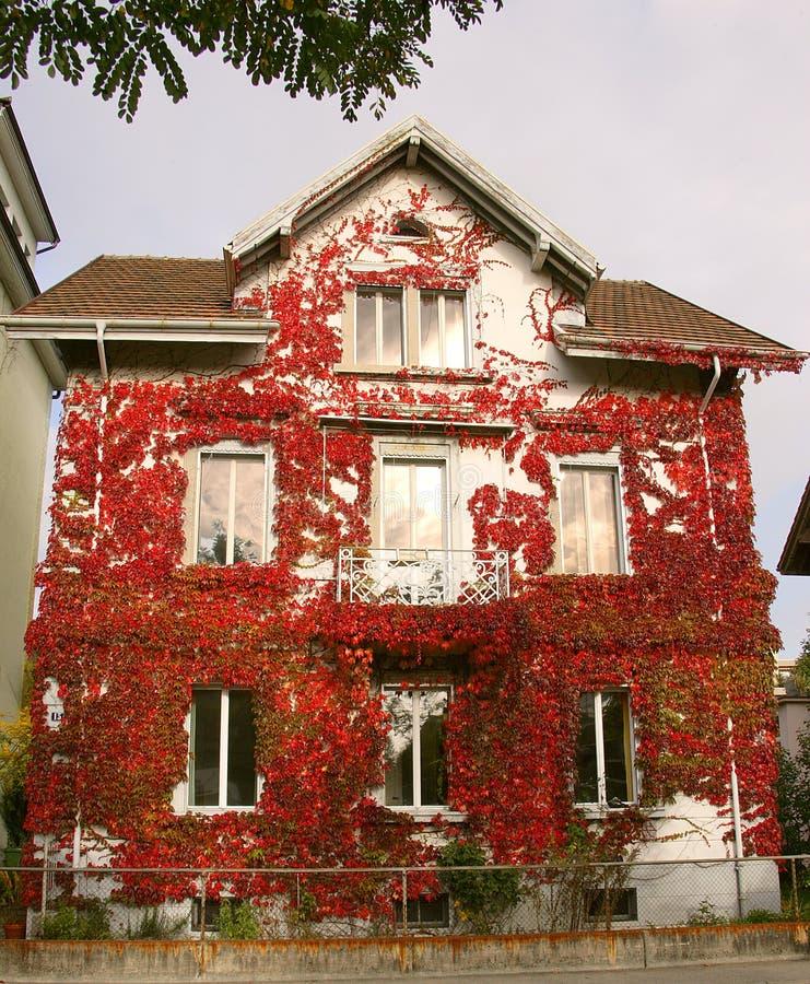 1 dom jesienny zdjęcie royalty free