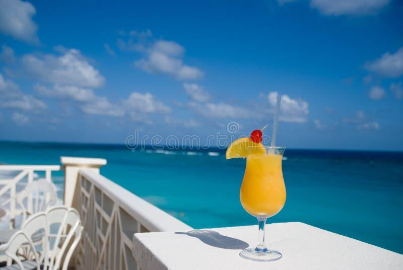 1 exotiska drink arkivfoto
