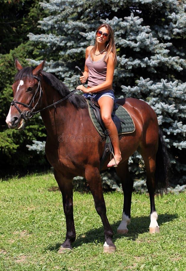 1 hästryggridning arkivfoto