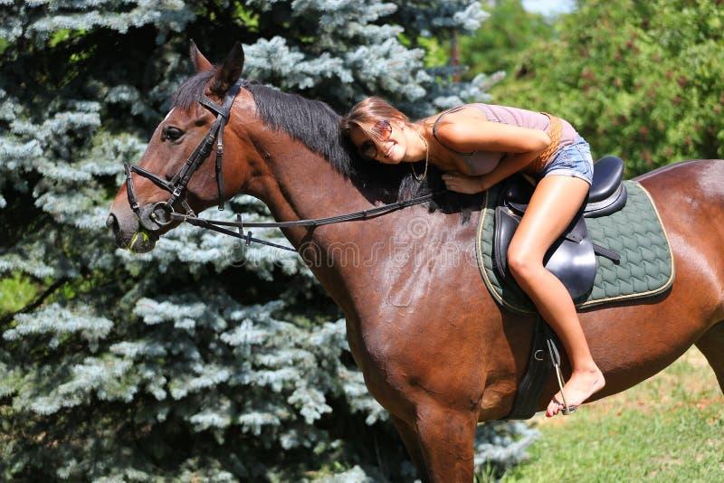 1 hästryggridning arkivfoton