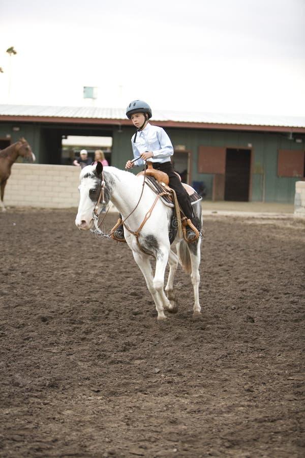 1 hästryggryttare royaltyfri fotografi