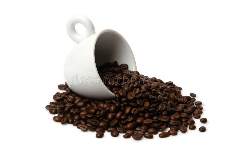 1 kaffekopp royaltyfri fotografi