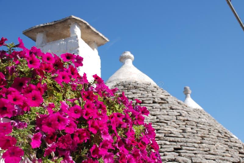 1 kwiaty różowią dach trullo obraz stock