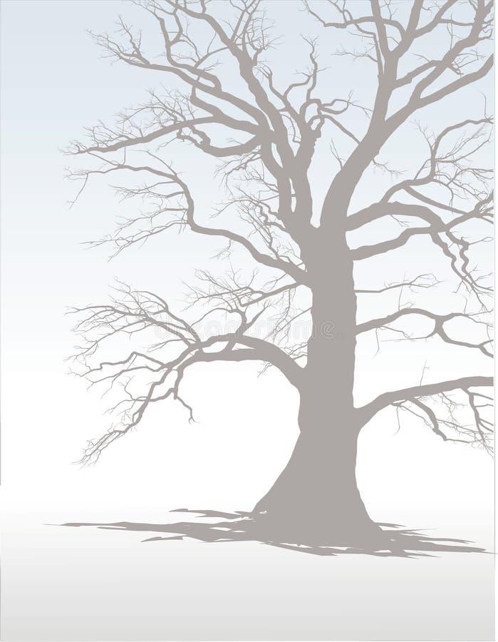 (1) mgły drzewa zima ilustracja wektor