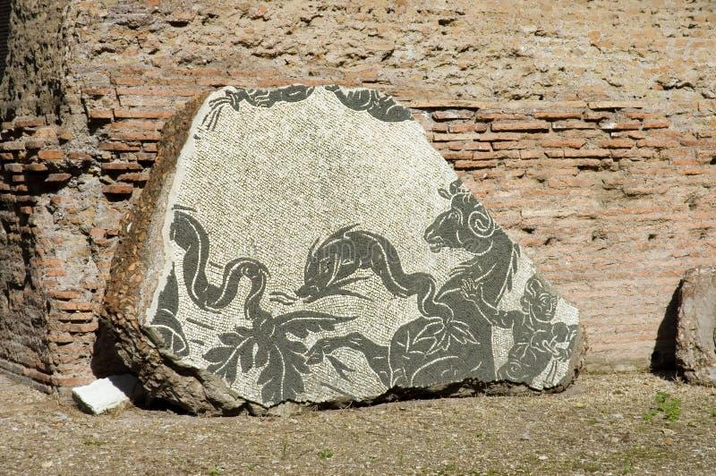 1 mozaika caracalla zdjęcia stock