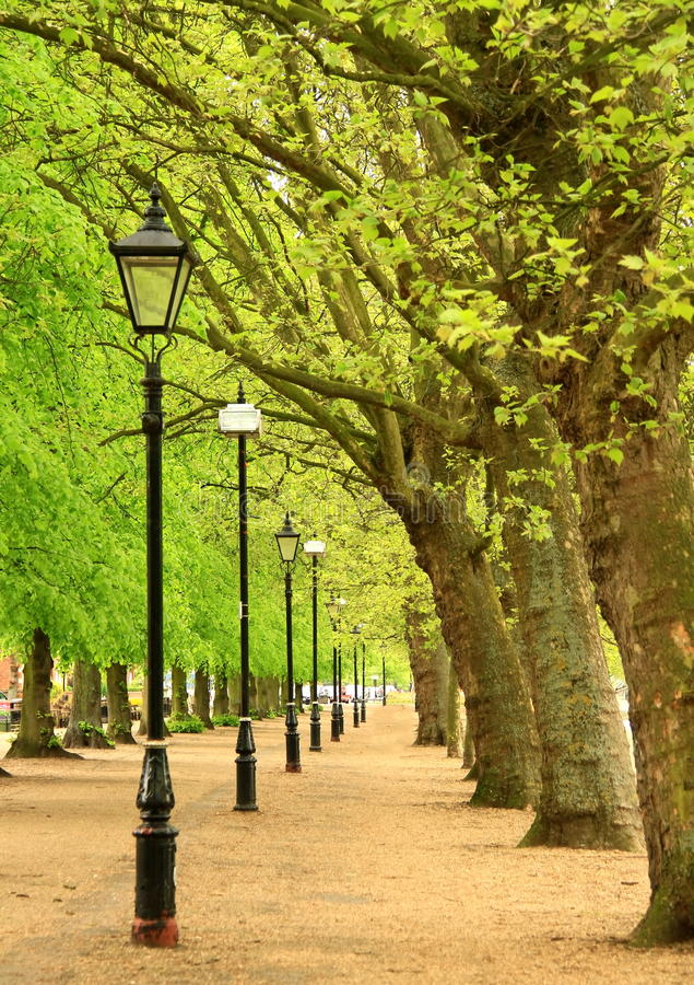 (1) park obrazy royalty free