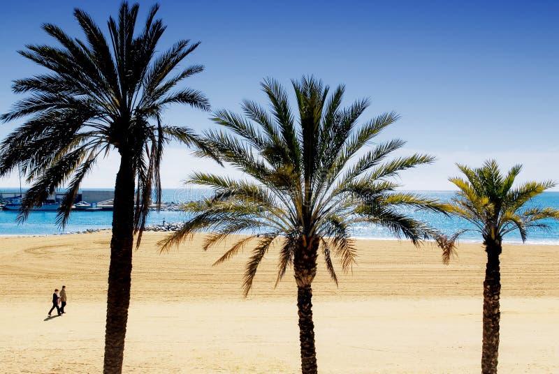 (1) plaża zdjęcie royalty free