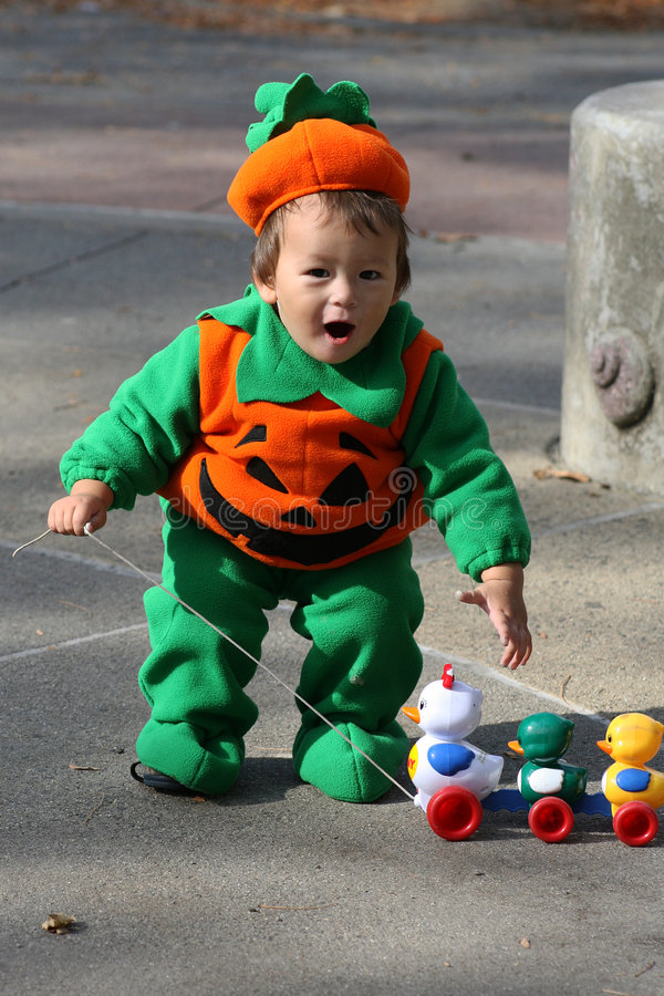 #1.Pumpkin baby. stock fotografie