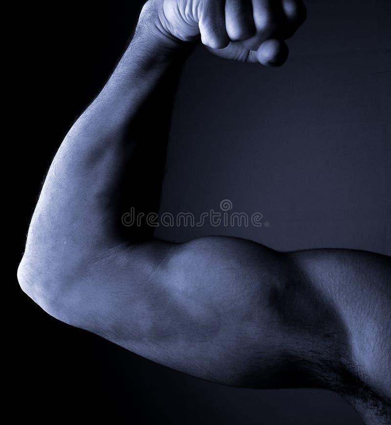Download 1 ręka obraz stock. Obraz złożonej z atrakcyjny, noga, gładki - 31869