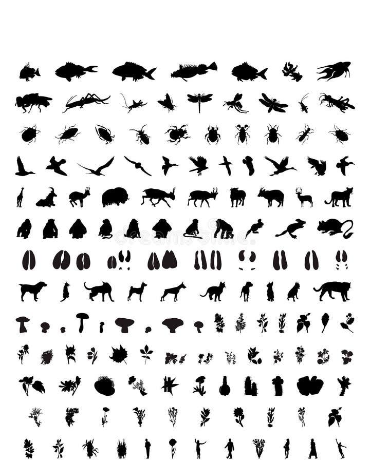 1 set silhouettesvektor royaltyfri illustrationer