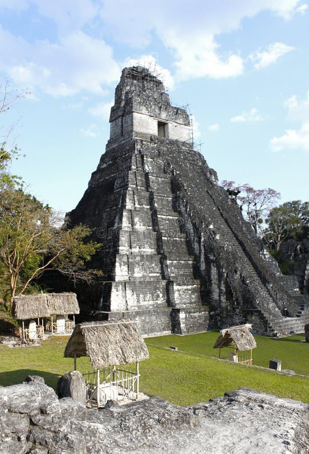 1 tikal tempel royaltyfri bild