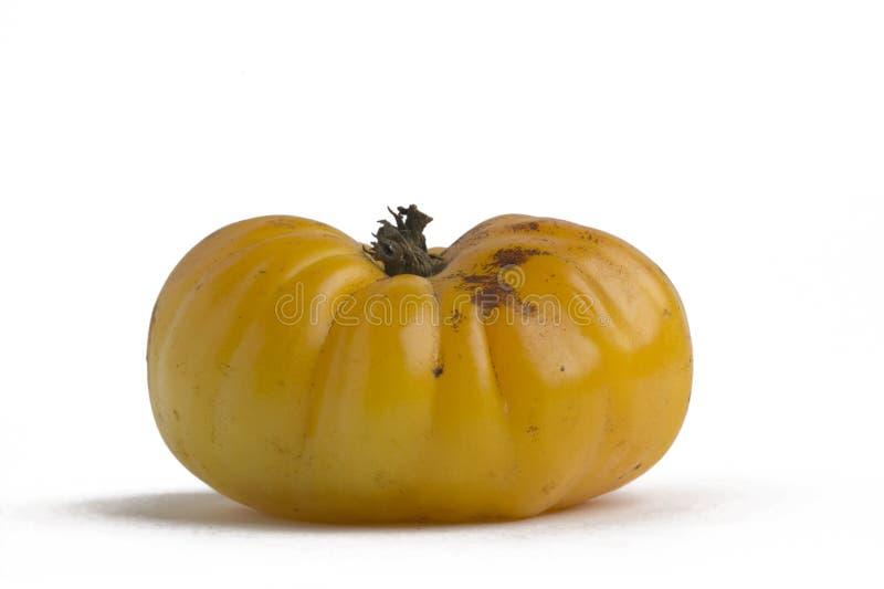 1 tomatyellow royaltyfria bilder