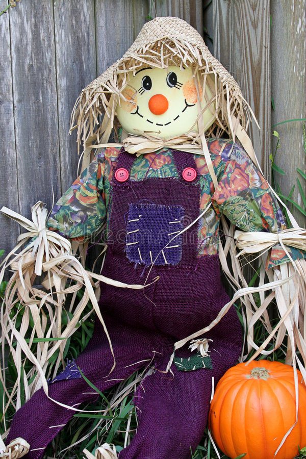 1 trädgårds- scarecrow royaltyfri fotografi