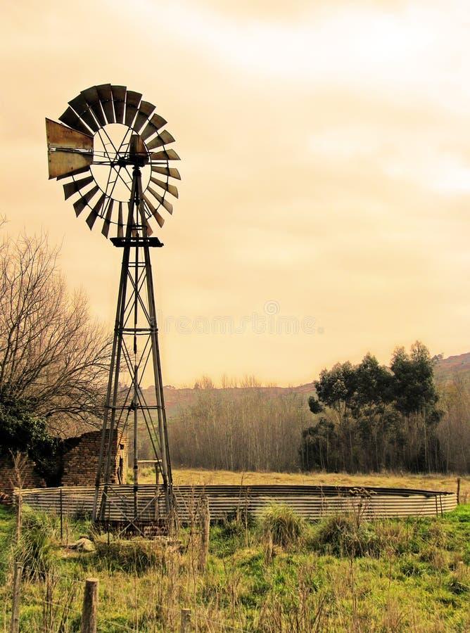(1) wiatraczek zdjęcie stock