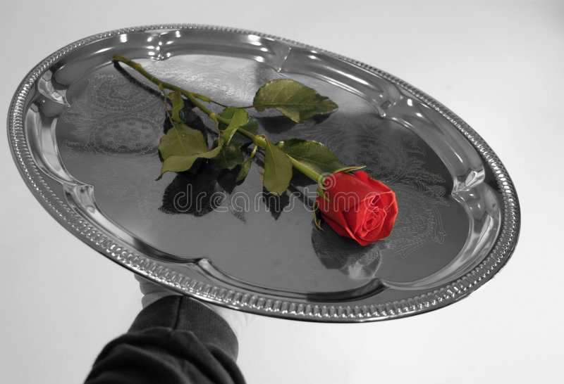 10朵玫瑰华伦泰 免版税库存照片