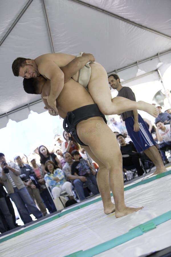10 борцов sumo стоковые изображения