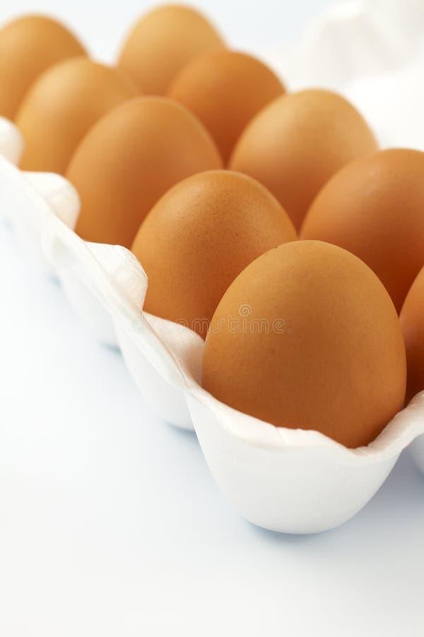 10 Eier im weißen Paket stockfotografie