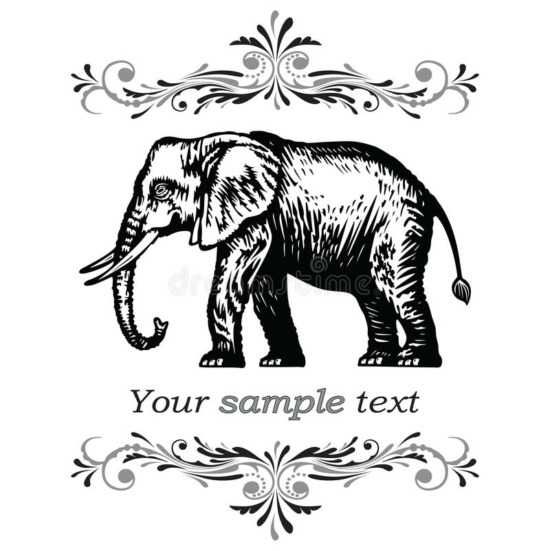10 słonia eps ilustraci wektor ilustracja wektor
