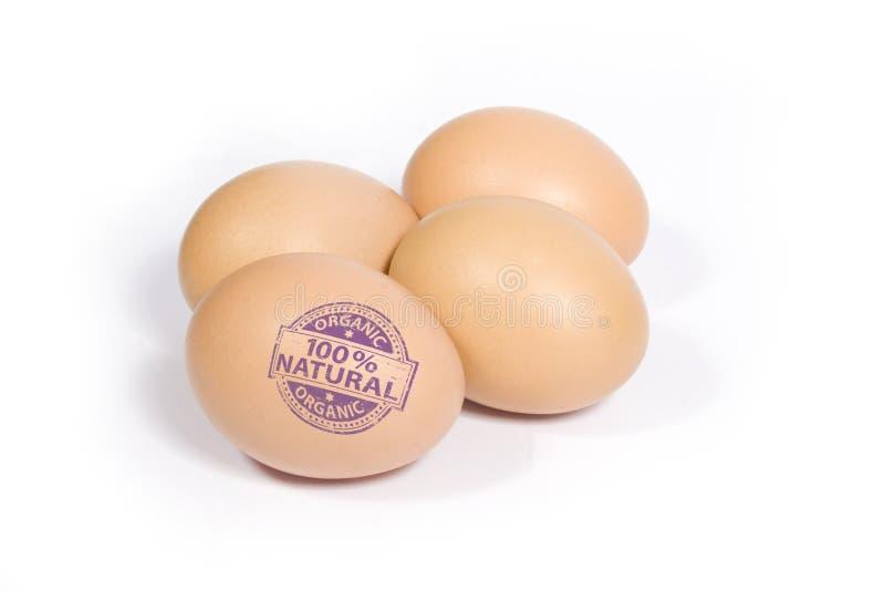 100蛋自然百分比 库存图片