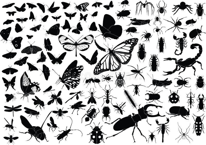100 насекомых иллюстрация штока