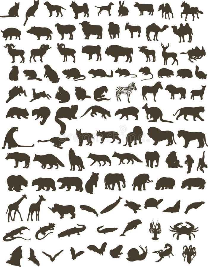 100 dieren royalty-vrije illustratie