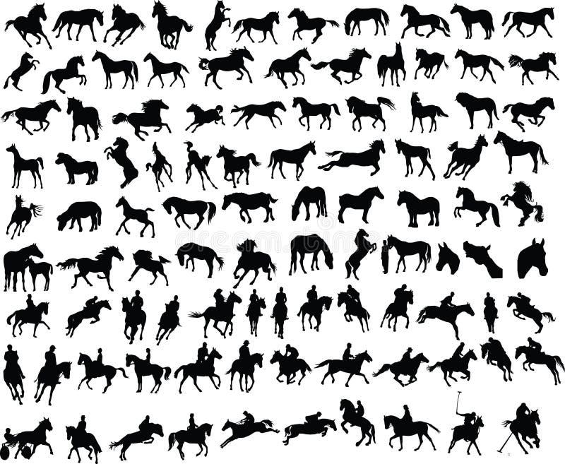 100 hästar stock illustrationer