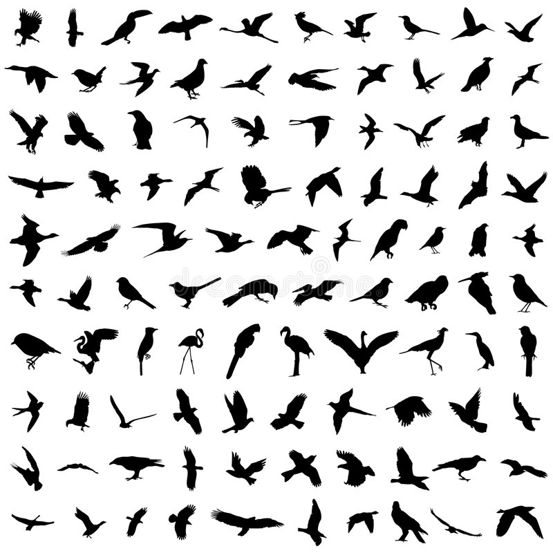 100 pássaros ilustração stock