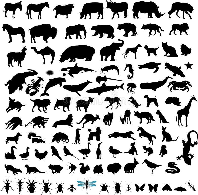 100 zwierząt ustawiają silhuette ilustracja wektor