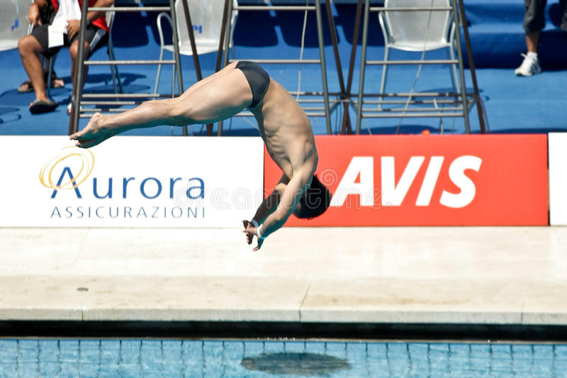 10m Platform Diving at the FINA World Championship