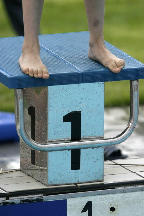 11 basenu dopłynięcie obrazy royalty free