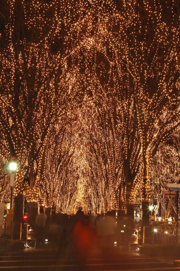 12月节日照明仙台 库存照片