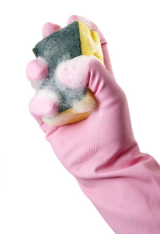 12 γάντια στοκ εικόνες